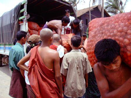 A. Novak: Distribúcia potravín v juhozápadnej časti delty, máj 2008