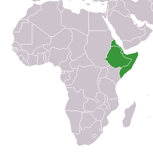 300px-Africa-countries-horn