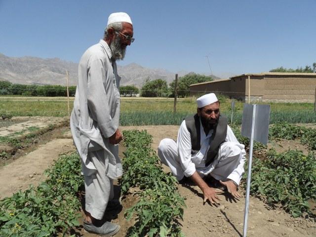 CVO-Afganistan-skolenie